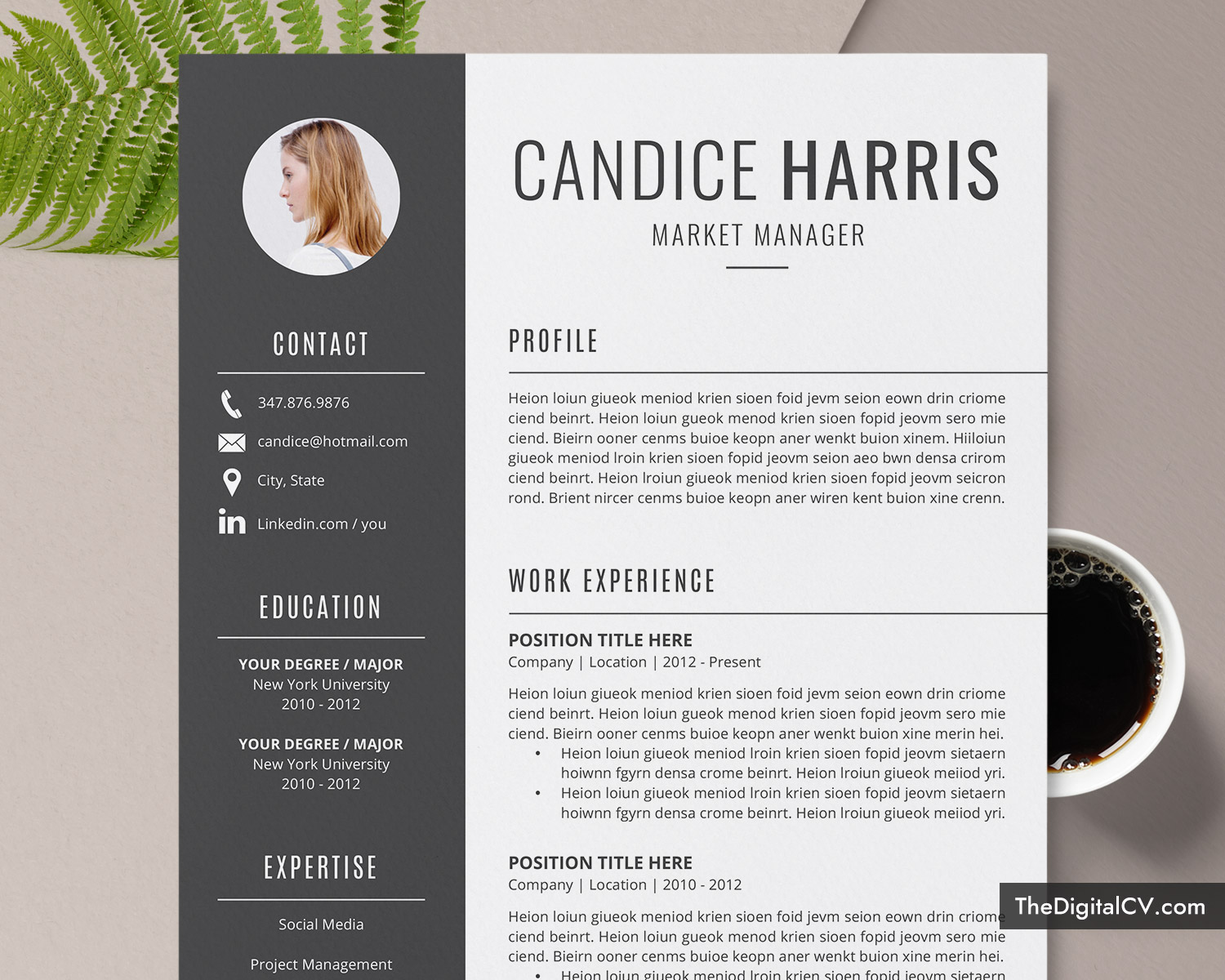 professional resume template for ms word  clean cv