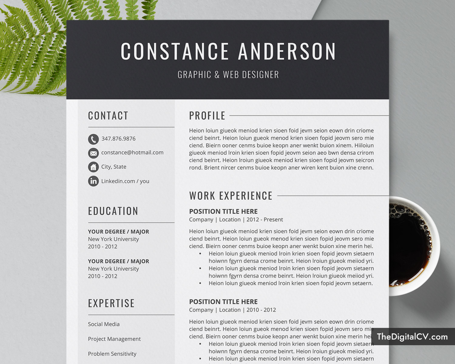 Professional Resume Template For Ms Word Cv Template Cover