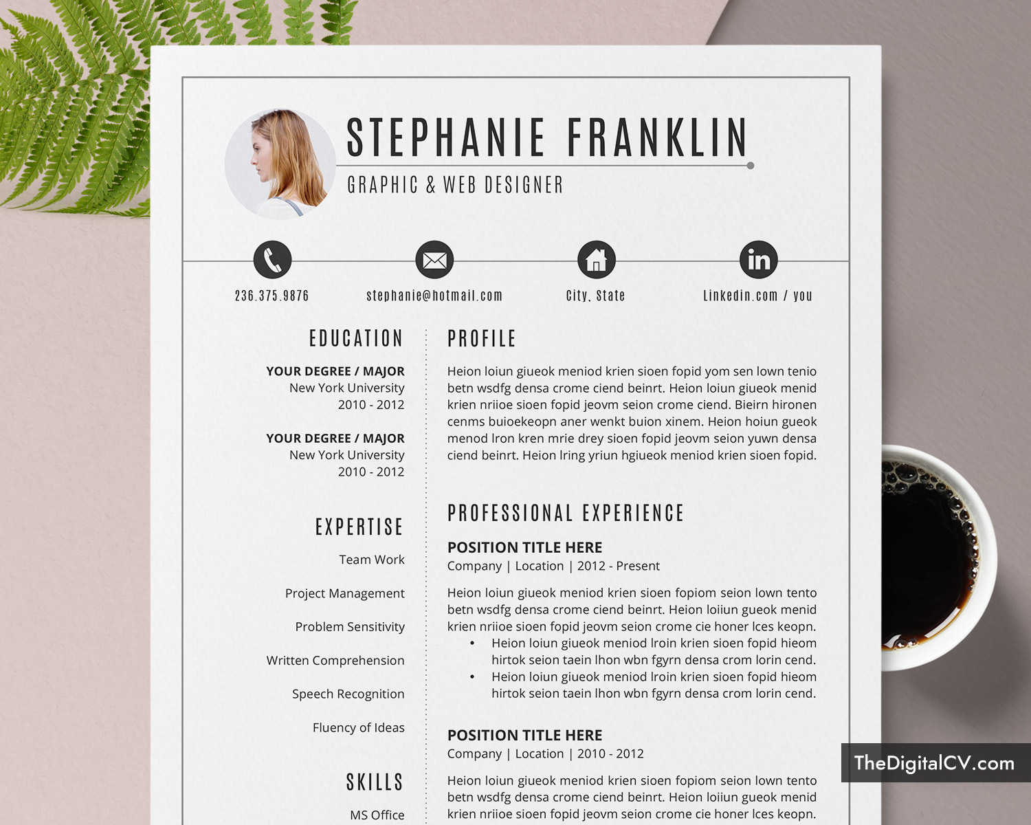 clean resume template for job application 2020