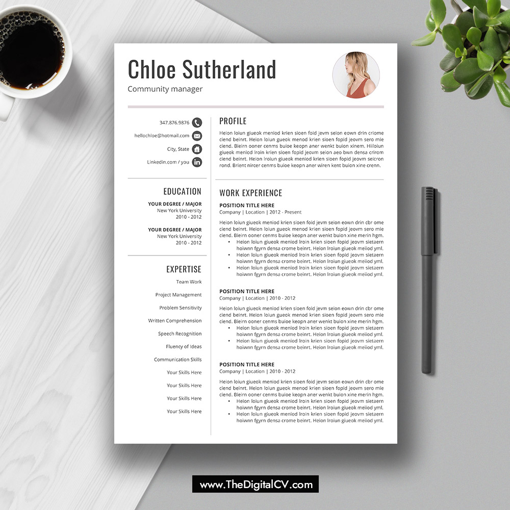 2019  cv templates  cover letter  resume editing guide  resume icons and fonts for