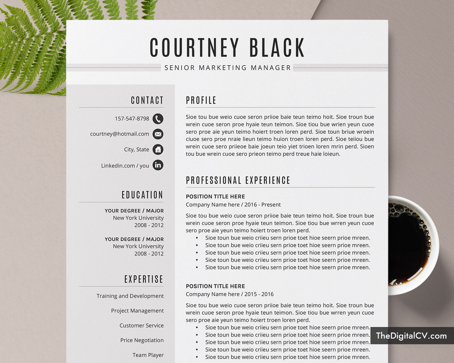 simple cv template for ms word  professional cv template