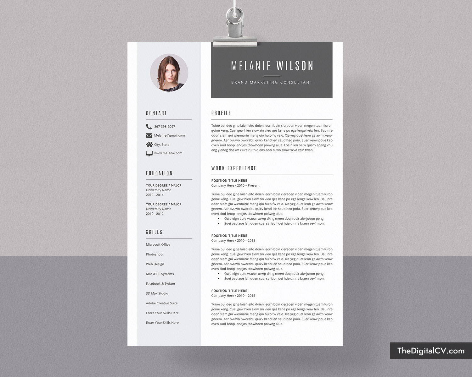 Professional curriculum vitae editor site for mba help writing management literature review