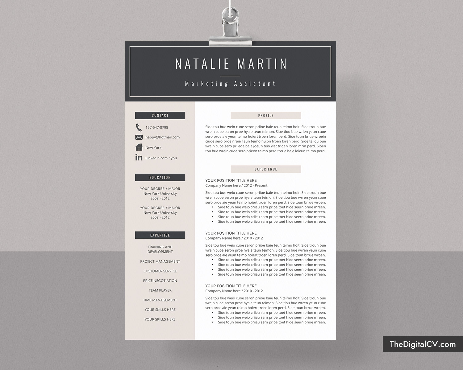 resume template    cv template for microsoft word  job